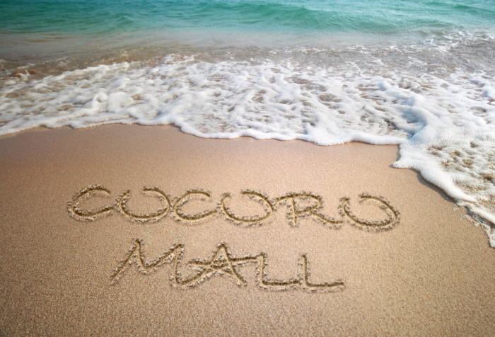 cocoro mall(ココロモール)